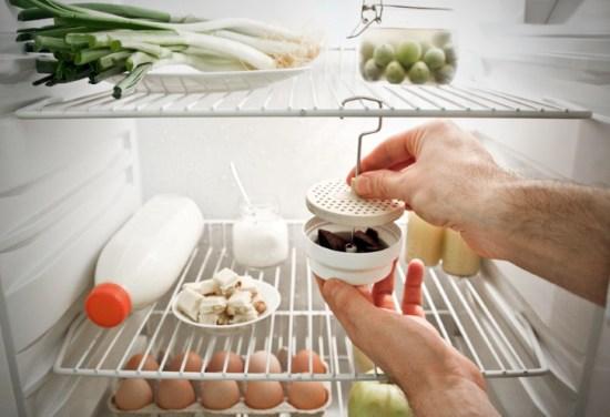 Поглотители плохого аромата в холодильнике